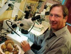 Миколог исследует грибы с помощью микроскопа
